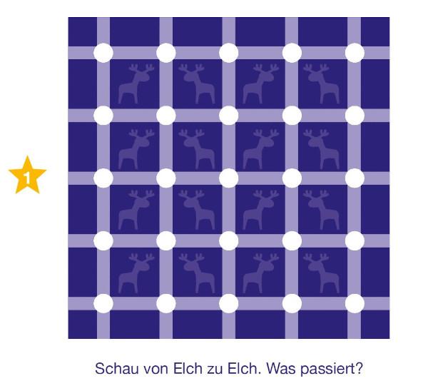Inhalt Adventskalender 24 Optische Illusionen 2016