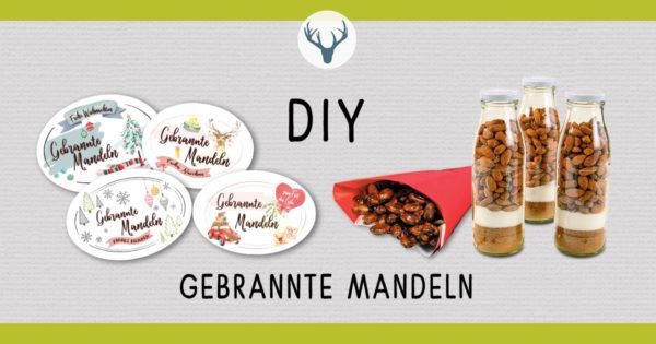 FB_DIY_Gebrannte_Mandeln