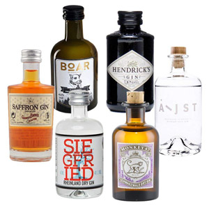 Gin-Mini-Tasting-Set