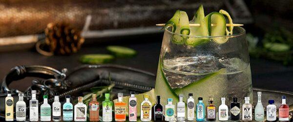 Gin Verkostungs-Adventskalender, Bild 1