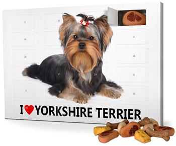 I-Love-Yorkshire-Terrier-Adventskalender-für-Hunde-2017