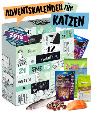 Katzen Adventskalender 2019