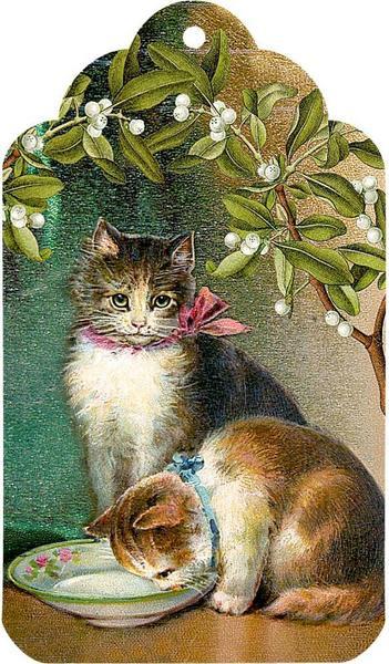 Katzen im Advent Adventskalender 2020 Inhalt