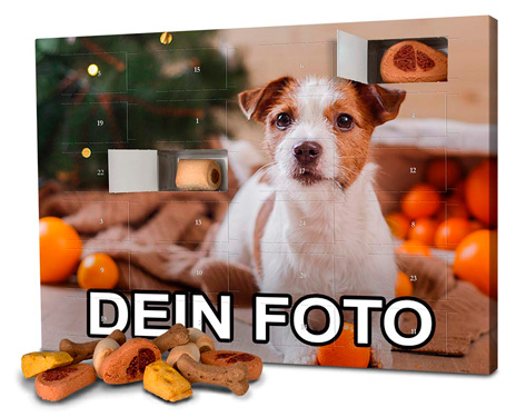 Photo-Fancy-Hunde-Adventskalender-2019