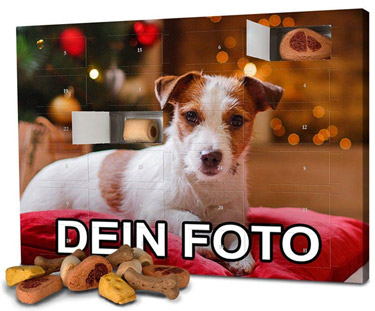Photo-Fancy-Hunde-Adventskalender-2018