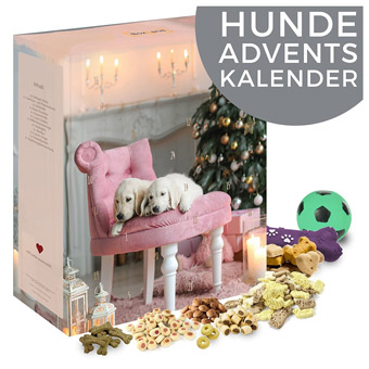 die besten adventskalender f r hunde katzen und kleintiere. Black Bedroom Furniture Sets. Home Design Ideas