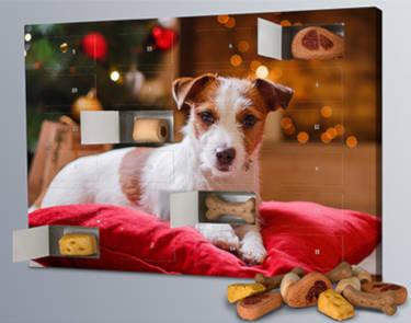 Printplanet Hunde Kalender
